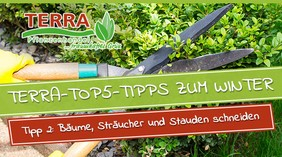 csm_terra-top5-tipps_tipp2_blog_a1c271f9f6